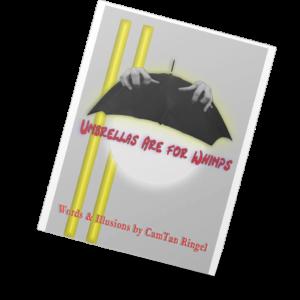 CamTam Ringel poetry book