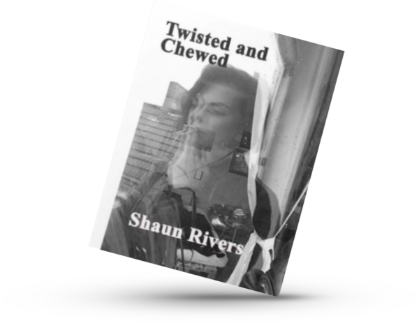 Twisted and Chewed eBook poetry book