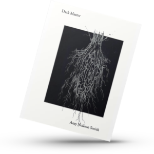 Dark Matter poetry book very sensual